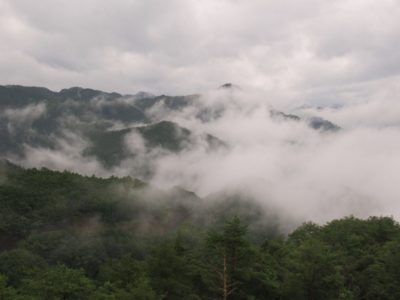 Mist in the mountains on the Kumano Kodo pilgrimage route in Japan