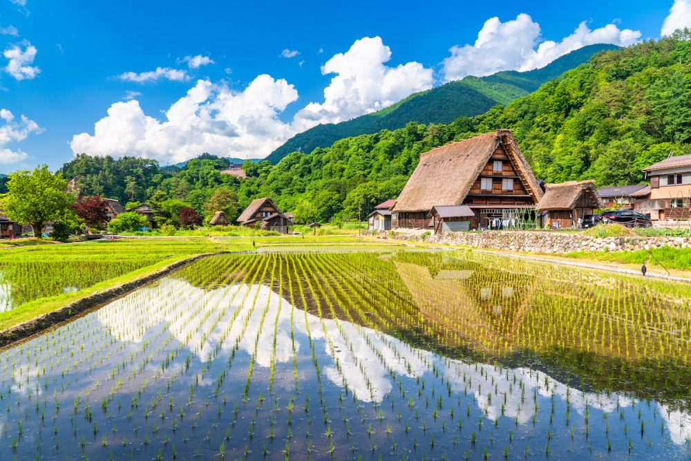Japan Spring Tour | Tokyo Package 10 Days