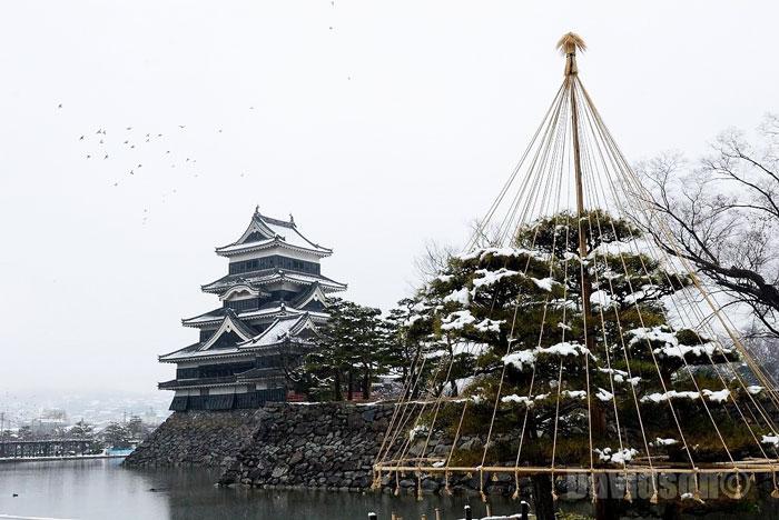 Snow Monkeys and Shirakawago Japan Winter Tour