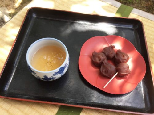 Tea with wagashi, Japanese sweets