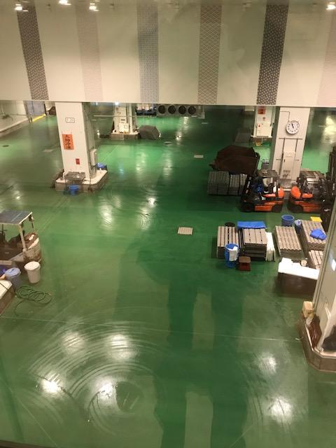 View of the tuna aucion floor in the Toyosu fish market in Tokyo, Japan