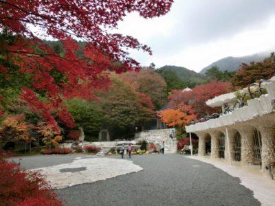 Garden of the Itchiko Kubota art museum in Kawaguchiko in autumn