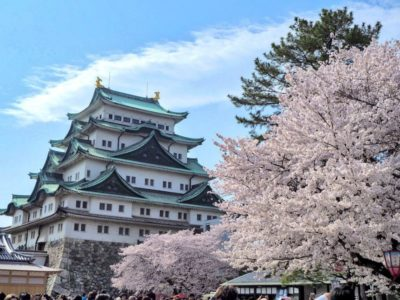 Nagoya castle with cherry blossoms in Nagoya, Japan