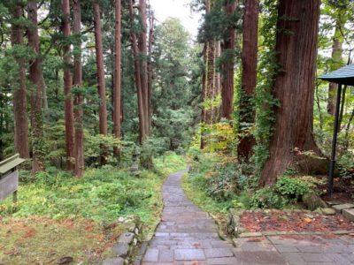 Trail on Dewa Sanzan in Yamagata, Japan