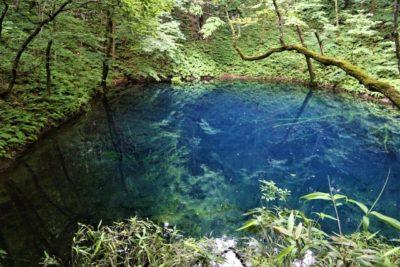 Aoike, 12 ponds, Aomori