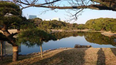 My Japan holiday 2020