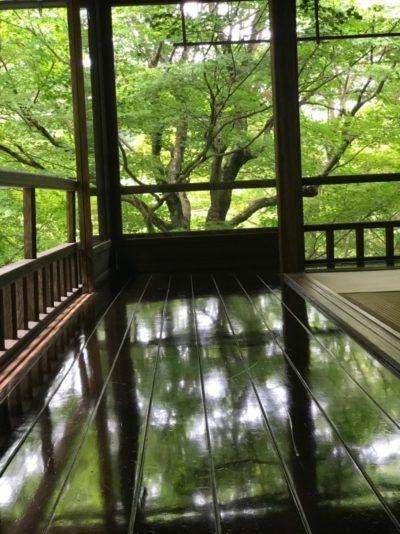 Shiny floor in the Rurikoin temple in Kyoto, Japan