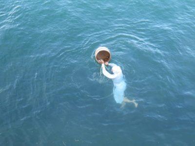 Mikimoto Pearl Island | Travel Guide