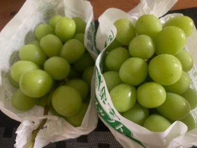 Shine muscat high quality grapes from Japan