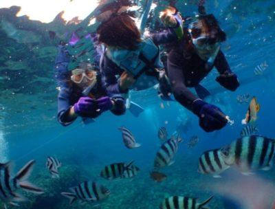 snorkeling in Okinawa main island Japan