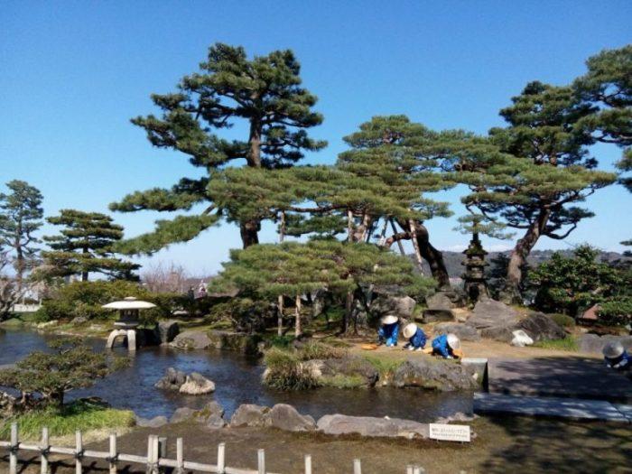 Gardeners working in the Kenrokuen garden in Kanazawa