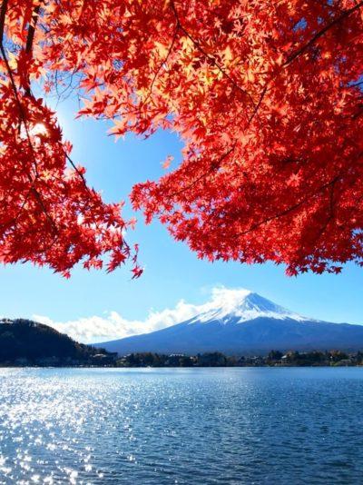 mt fuji autumn