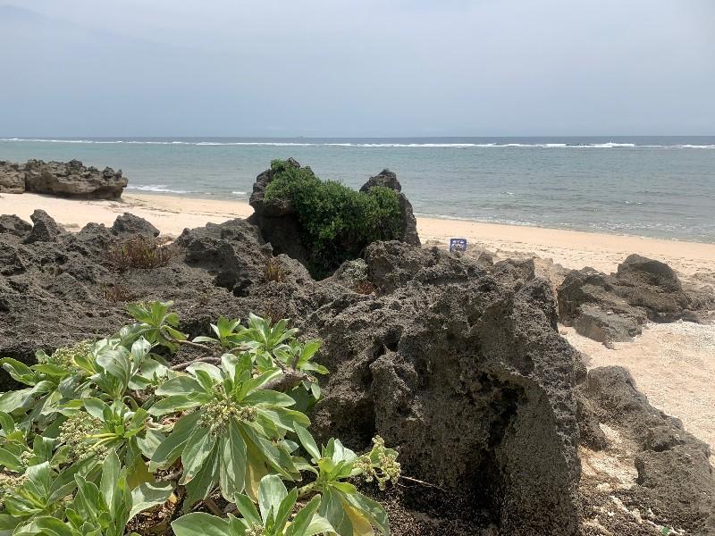 View at Pizza Hama beach in Kudaka Island, Okinawa, Japan