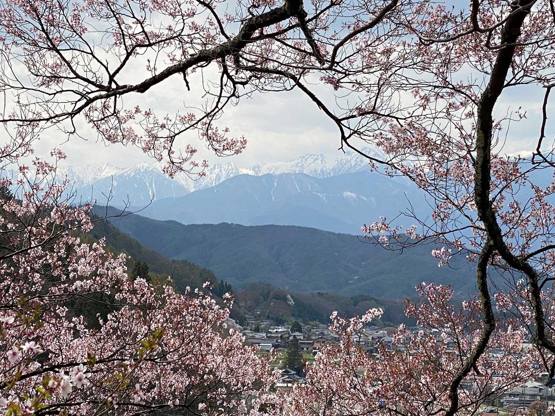 View in spring in Takato Joshi Park in Nagano, Japan